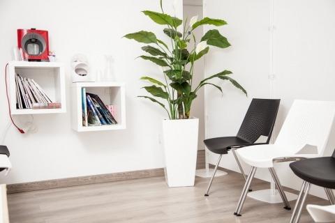 Sala de espera - Clínica de Psicología Mindic