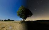 Estrellas en el día y en la noche